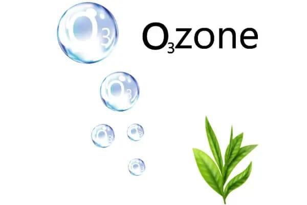 hydropool Ez PureOzone